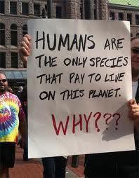 eco stupid and stuff