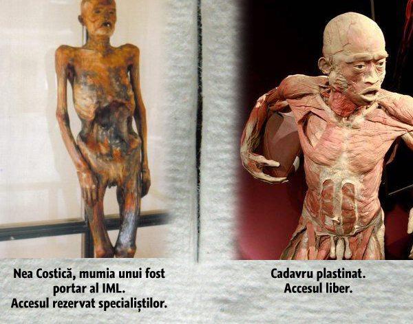 expozitie-corpuri-plastinate-vs-muzeul-mina-minovici