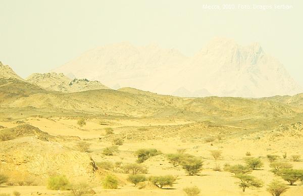 mecca-medina-2010