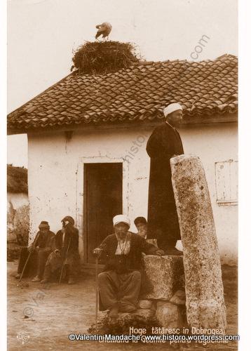 tatari-dobrogea