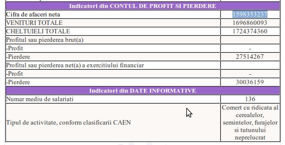 toepfer-cifra-afaceri-2011